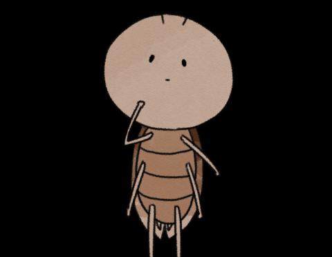 ゴキブリムエンダーの実力やいかに!